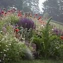 "<p><span style=""font-size:11px""><em>Chanticleer Garden - Lisa Roper</em></span></p>"