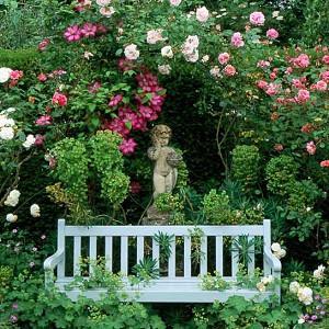 Planting Roses, Rose Gardening, Designing with Roses, English Roses, Garden retreat, garden roses, Rose bushes, English Roses, Rose Aloha, rose New Dawn, rose The Generous Gardener, Clematis Ville de Lyon, pink roses, pink clematis