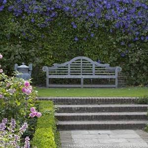 Garden Ideas, Landscaping ideas, Vertical Planting, living wall, garden wall, blue Clematis, clematis Perle d'Azur, Clematis Prince Charles, Garden Bench, Sissinghurst Rose garden, Garden ornamenents