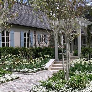 Garden ideas, Landscaping ideas, pergola, arbor, french style garden, tulips, late spring garden, tulip Spring green,Tulip Viridiflora, white garden, AHBL Landscape, cobble stones, courtyard