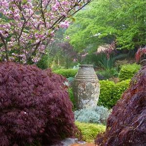 Arthur Lathouris Designer, Australian garden, Asiatic garden idea, eclectic garden idea