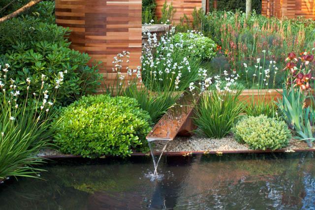 Contemporary Garden, Contemporary Gardens, Contemporary Garden Ideas, Contemporary Garden Style, Contemporary Garden Design, Contemporary Garden Landscaping, Contemporary Garden Plants