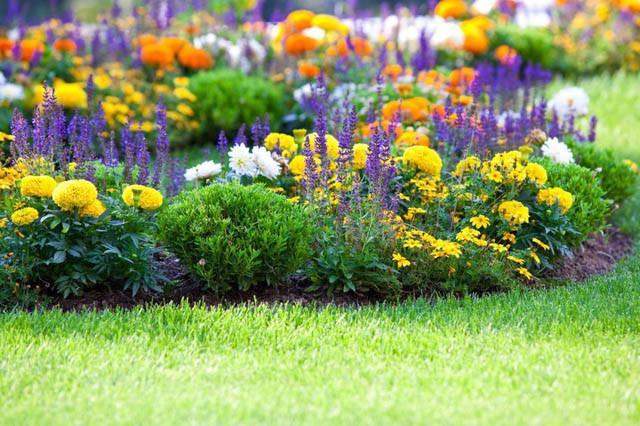 Edging Garden Borders Inspiring Garden Ideas For All Gardeners