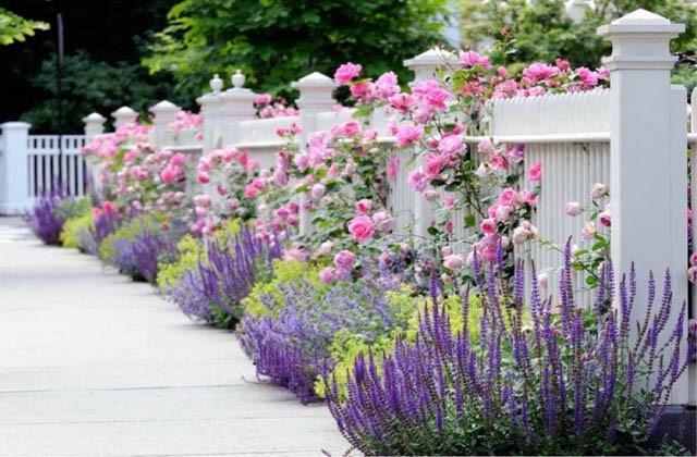 Walls Fences Inspiring Garden Ideas For All Gardeners