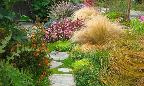 Coastal Gardens Inspiring Garden Ideas For All Gardeners