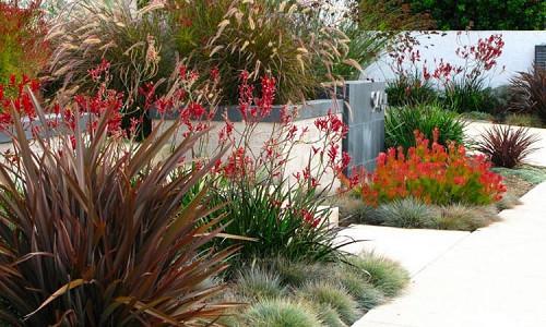 Coastal Gardens - Inspiring Garden Ideas For All Gardeners