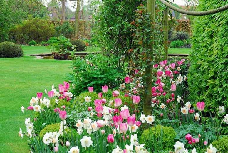 A Romantic Border Idea For Your Mid Late Spring Garden