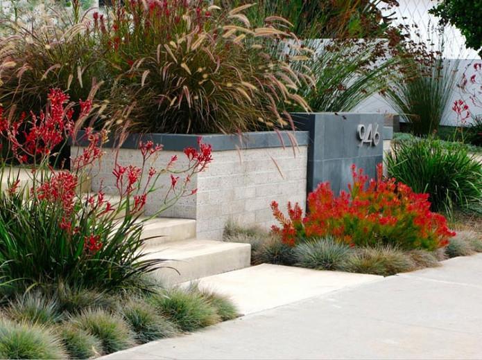 An Elegant Front Garden Debora Carl Landscape Design