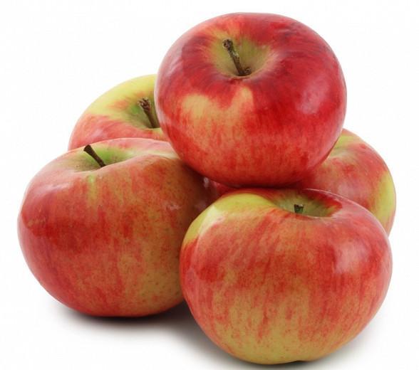 Malus domestica 'Cortland', Apple 'Cortland', Cortland Apple, Malus 'Cortland', Red Apple, White flowers,