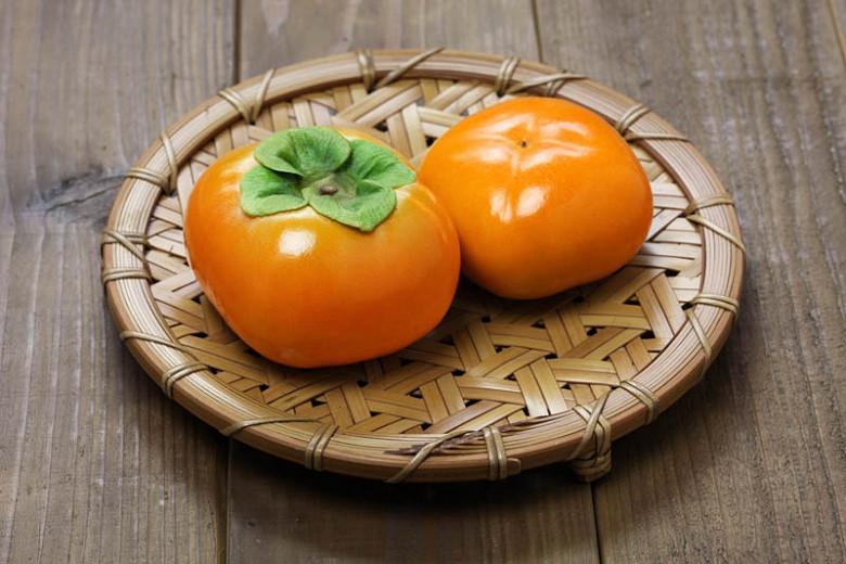 Diospyros kaki 'Jiro', Japanese Persimmon 'Jiro', Chinese Date Plum 'Jiro', Chinese Persimmon 'Jiro', Oriental Persimmon 'Jiro', Kaki 'Jiro'