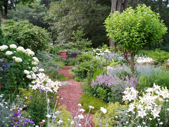Landscape Design, Garden ideas