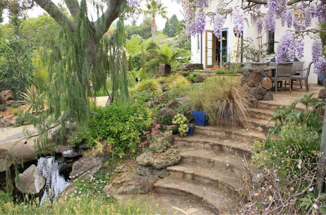 Garden Ideas, Landscaping ideas, pathway, walkway, side yard, urn, Mediterranean Garden, Goodman Landscape design, flagstones path, secret path, flagstone steps, stepping stones, wisteria, succulent, bamboo